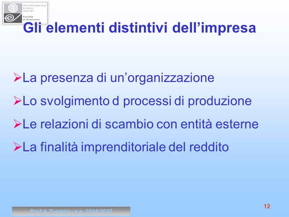 Prof.A.Tunisini - a.a. 2006/2007 12 Gli elementi distintivi dellimpresa La presenza di unorganizzazione Lo svolgimento d processi di produzione Le rel