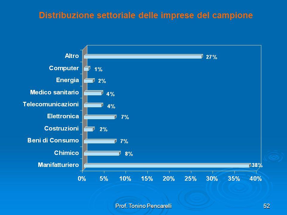 Prof. Tonino Pencarelli52 Distribuzione settoriale delle imprese del campione
