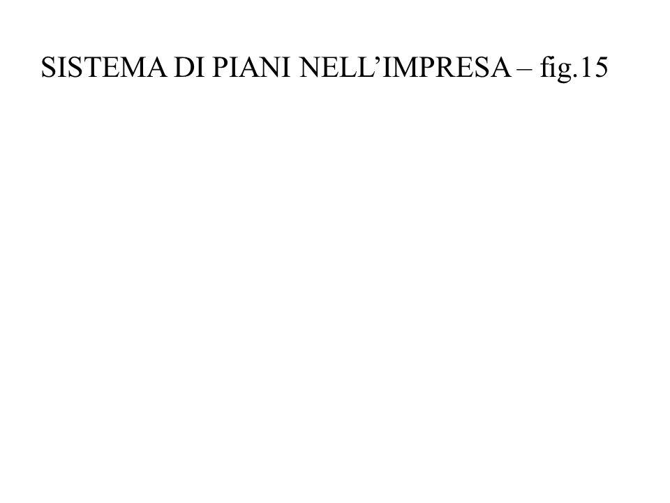 SISTEMA DI PIANI NELLIMPRESA – fig.15
