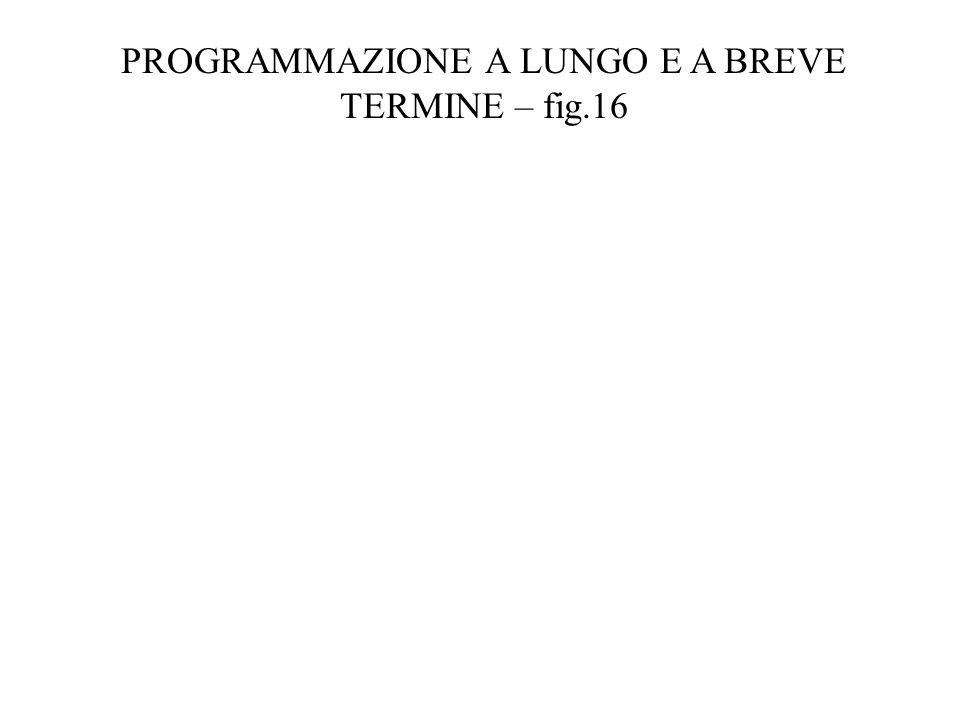 PROGRAMMAZIONE A LUNGO E A BREVE TERMINE – fig.16