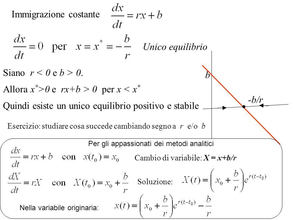 Crescita logistica di una popolazione Nuova ipotesi: mortalità = m + sx da Si passa a: Secondo membro dellequazione di evoluzione (una parabola) (r sx)x 0 per 0 x r/s x dx/dt r/s 0 Se proprio si vuole integrare… … r/s t x x(0) Soluzione:
