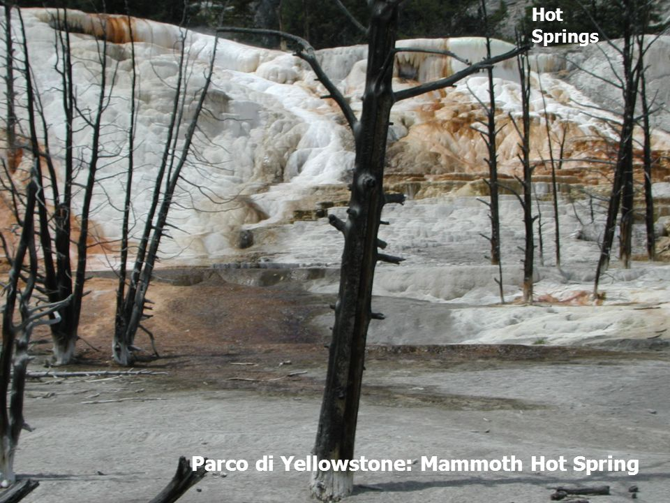 Parco di Yellowstone: Mammoth Hot Spring Hot Springs