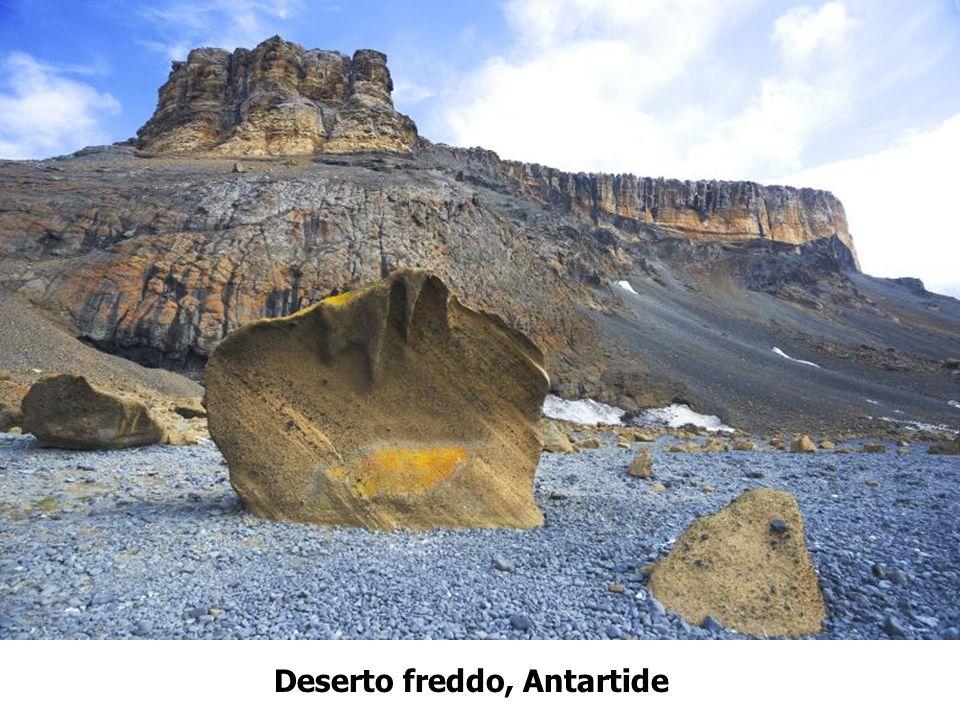 Deserto freddo, Antartide