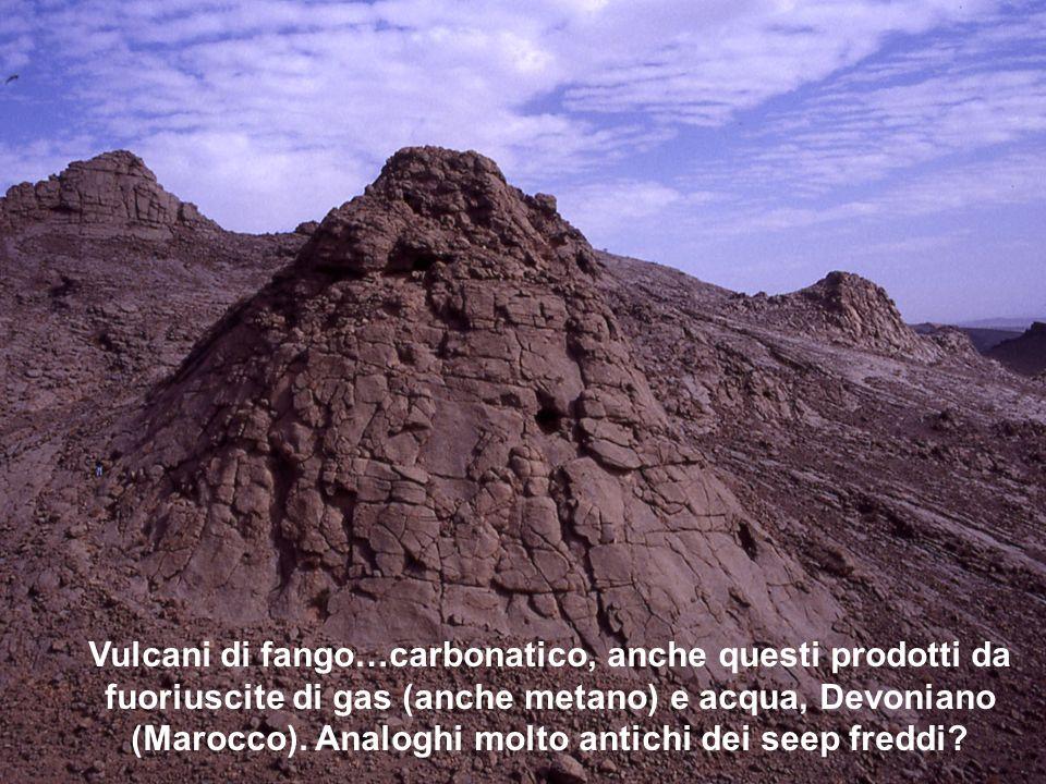 Vulcani di fango…carbonatico, anche questi prodotti da fuoriuscite di gas (anche metano) e acqua, Devoniano (Marocco). Analoghi molto antichi dei seep