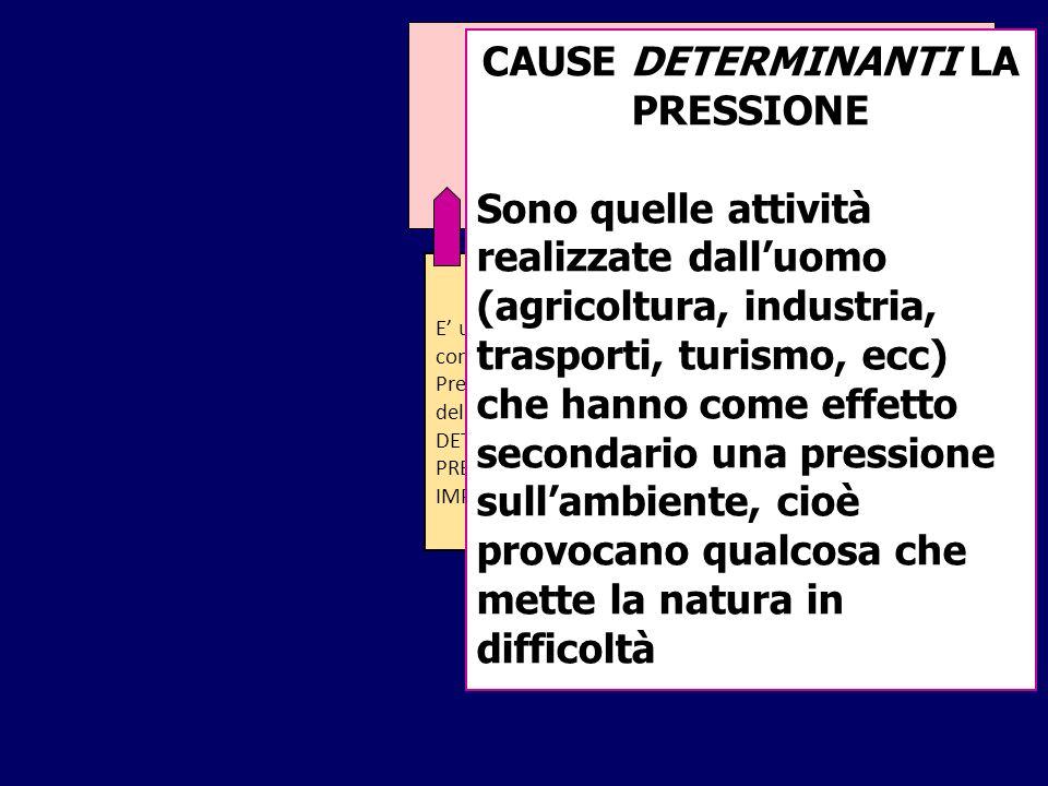 MODELLO DPSIR E un modo di descrivere le condizioni dellambiente. Prende il nome dalle iniziali delle sue categorie: DETERMINANTE PRESSIONE STATO IMPA