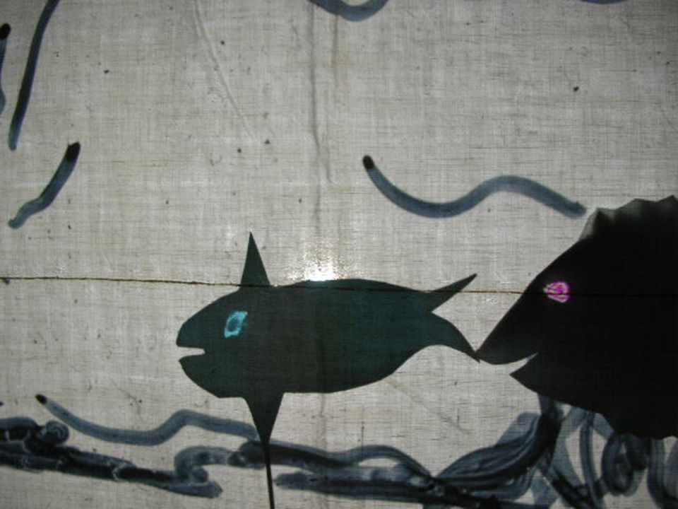 Il mare si popolò di pesci.
