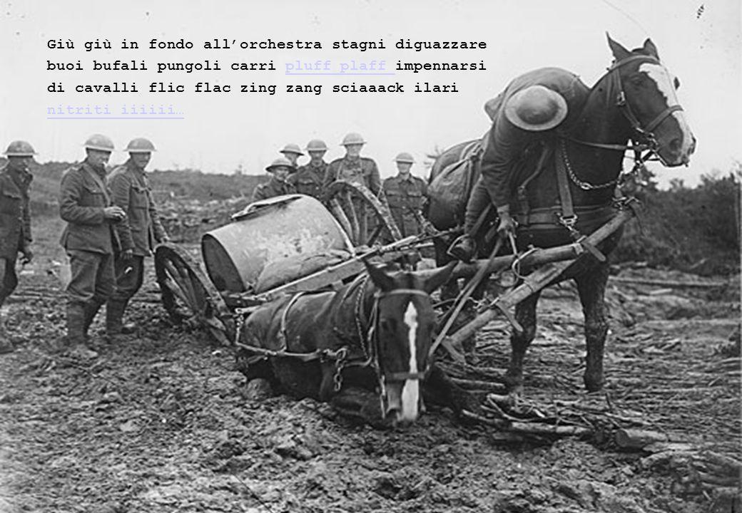 Scalpiccii tintinnii 3 battaglioni bulgari in marcia croooc- craaac…
