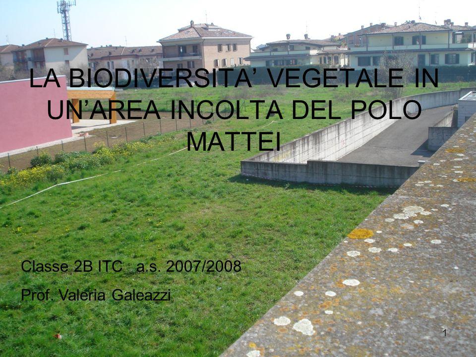 1 LA BIODIVERSITA VEGETALE IN UNAREA INCOLTA DEL POLO MATTEI Classe 2B ITC a.s. 2007/2008 Prof. Valeria Galeazzi