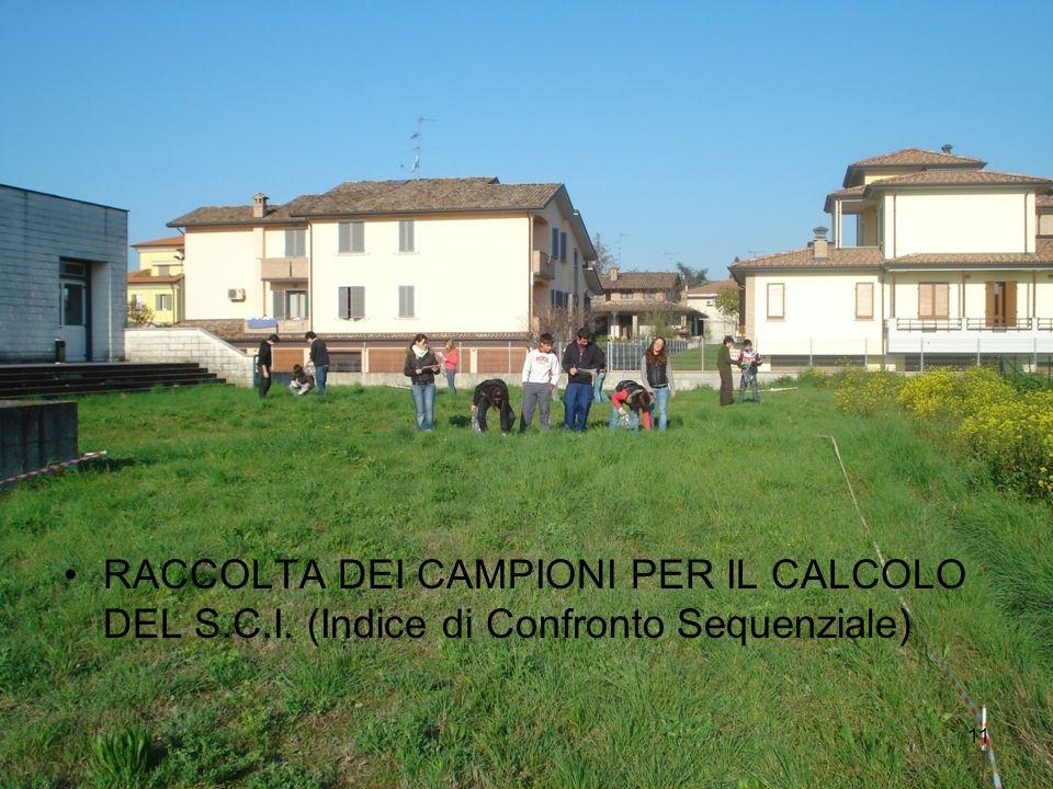 11 RACCOLTA DEI CAMPIONI PER IL CALCOLO DEL S.C.I. (Indice di Confronto Sequenziale)