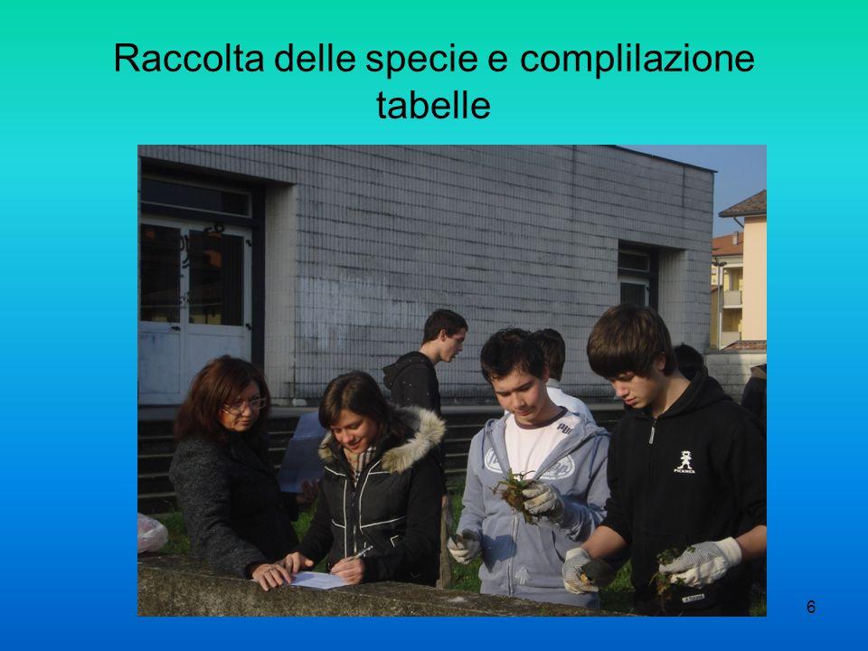 6 Raccolta delle specie e complilazione tabelle