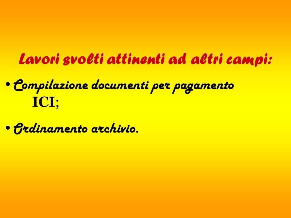 Lavori svolti attinenti ad altri campi: Compilazione documenti per pagamento ICI; Ordinamento archivio.