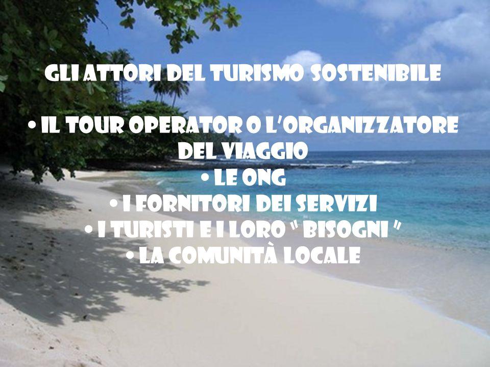 Gli attori del turismo sostenibile Il tour operator o lorganizzatore del viaggio Le ONG I fornitori dei servizi I turisti e i loro bisogni La comunità