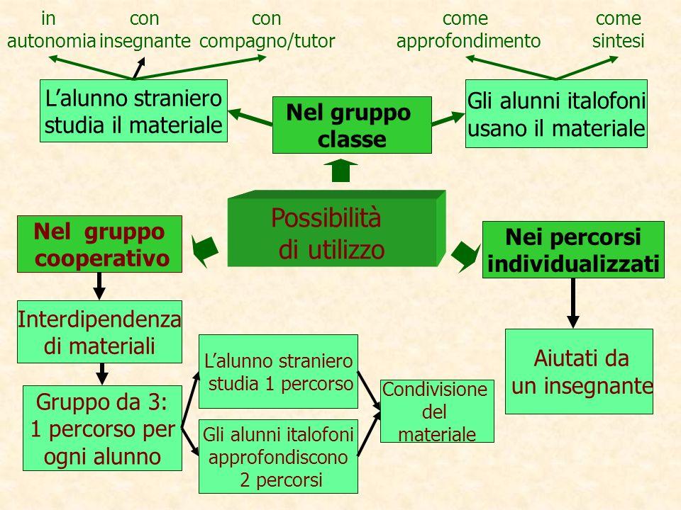 Possibilità di utilizzo Nel gruppo classe Lalunno straniero studia 1 percorso Nel gruppo cooperativo Nei percorsi individualizzati Interdipendenza di