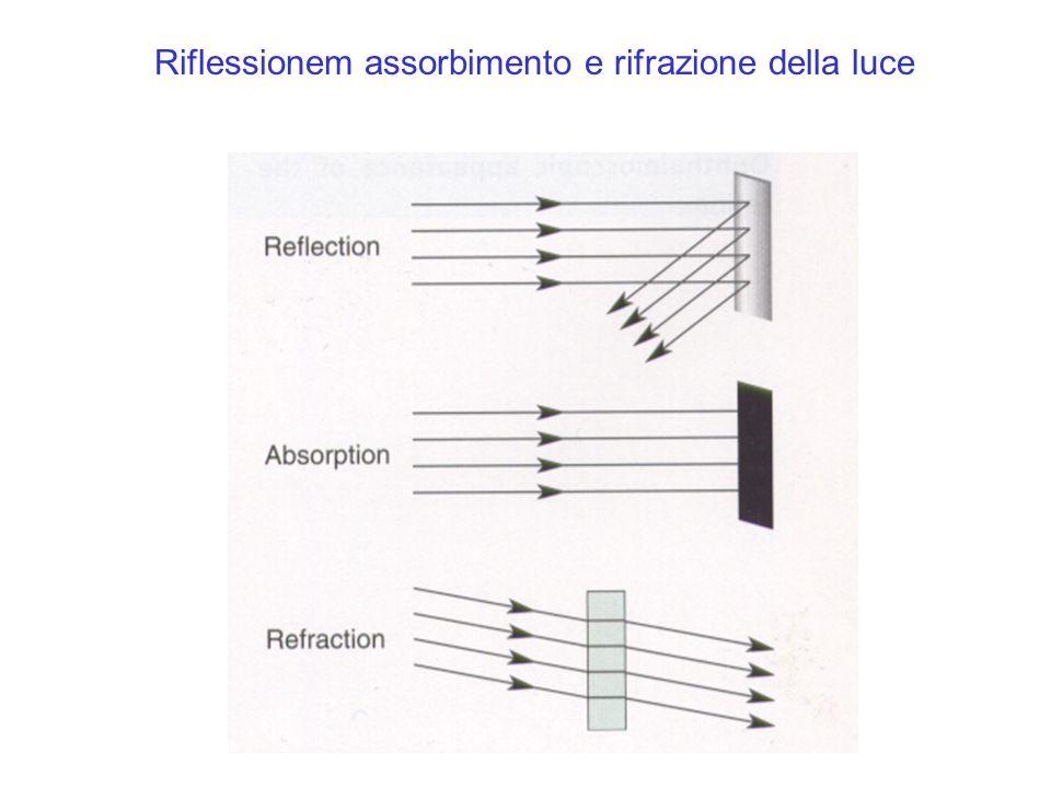 Proiezione delle immagini sulla retina.
