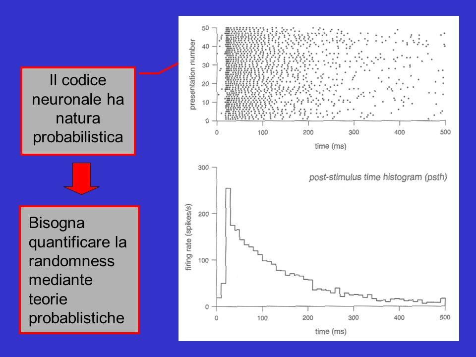 Il codice neuronale ha natura probabilistica Bisogna quantificare la randomness mediante teorie probablistiche