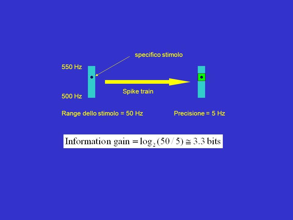 500 Hz 550 Hz Range dello stimolo = 50 Hz specifico stimolo Spike train Precisione = 5 Hz
