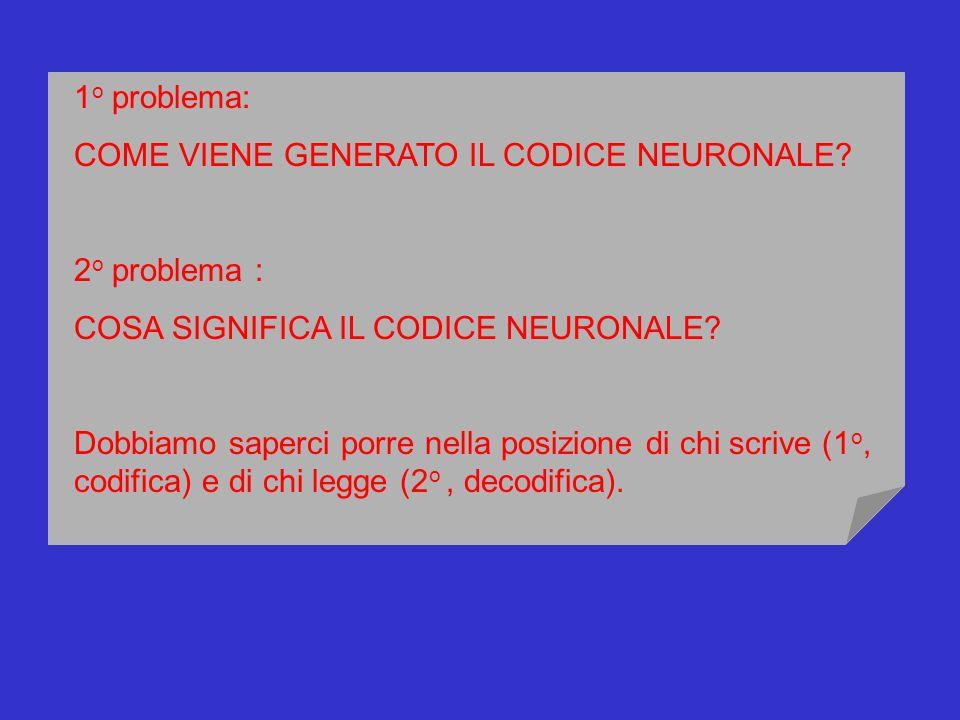 1 o problema: COME VIENE GENERATO IL CODICE NEURONALE? 2 o problema : COSA SIGNIFICA IL CODICE NEURONALE? Dobbiamo saperci porre nella posizione di ch