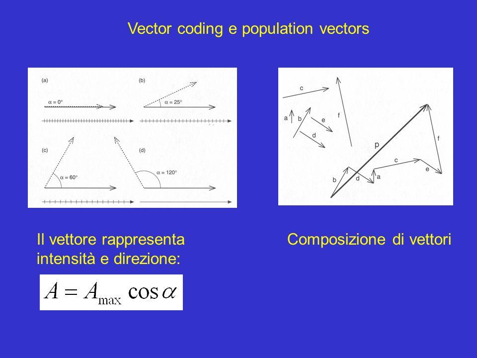 Vector coding e population vectors Il vettore rappresenta intensità e direzione: Composizione di vettori