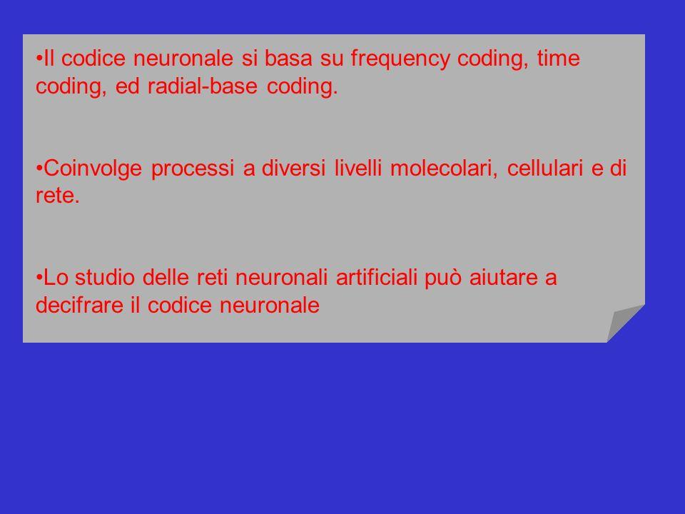 Il codice neuronale si basa su frequency coding, time coding, ed radial-base coding. Coinvolge processi a diversi livelli molecolari, cellulari e di r