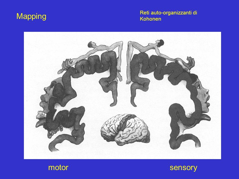 Mapping motorsensory Reti auto-organizzanti di Kohonen
