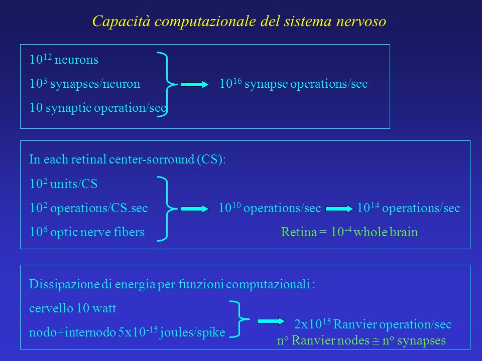 Capacità computazionale del sistema nervoso 10 12 neurons 10 3 synapses/neuron 10 synaptic operation/sec 10 16 synapse operations/sec 10 2 units/CS 10 2 operations/CS.sec 10 6 optic nerve fibers 10 10 operations/sec 10 14 operations/sec In each retinal center-sorround (CS): Retina = 10 -4 whole brain Dissipazione di energia per funzioni computazionali : cervello 10 watt nodo+internodo 5x10 -15 joules/spike 2x10 15 Ranvier operation/sec n o Ranvier nodes n o synapses