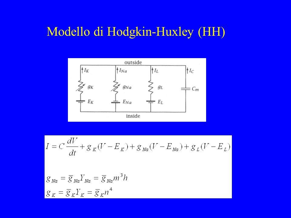 Modello di Hodgkin-Huxley (HH)
