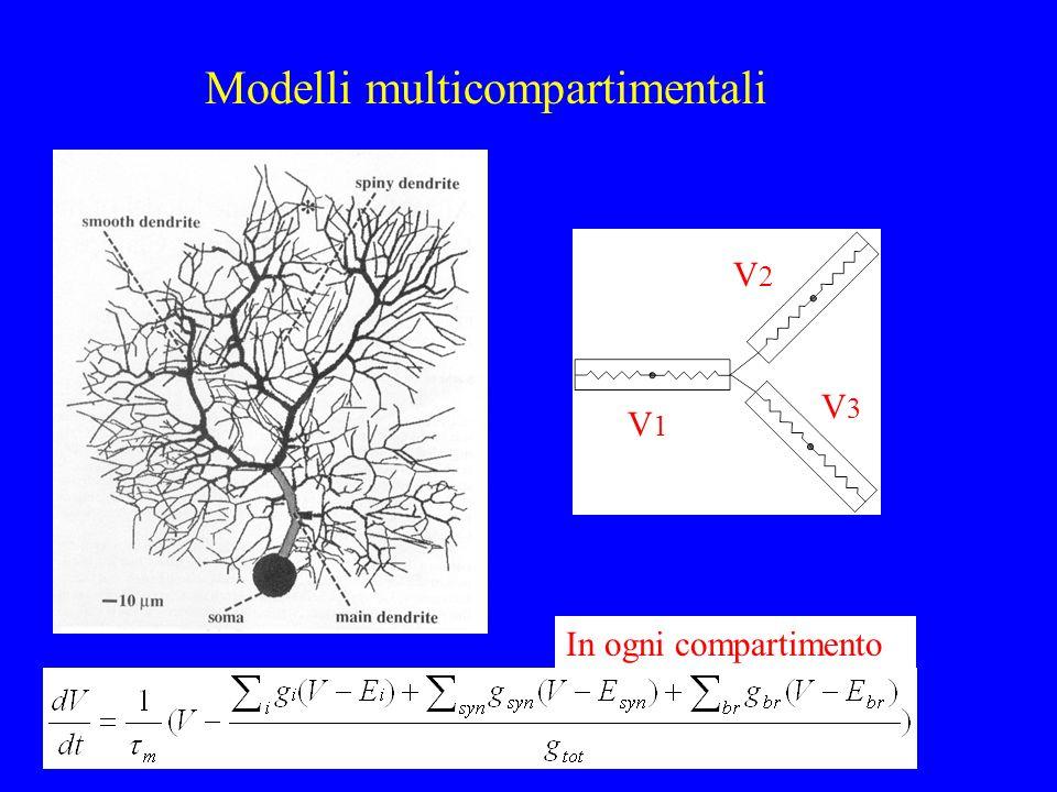 Modelli multicompartimentali In ogni compartimento V1V1 V2V2 V3V3