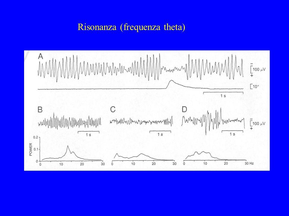 Risonanza (frequenza theta)