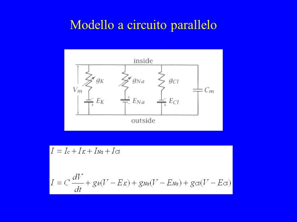 Modello a circuito parallelo