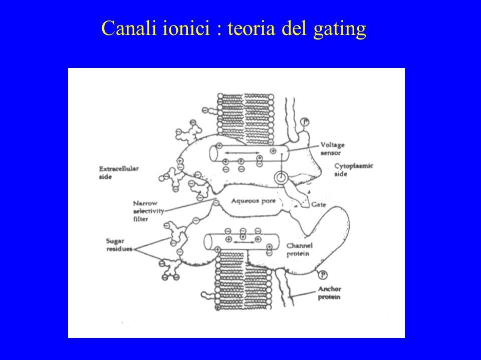 Gating: tempo-dipendenza a b y (1-y)