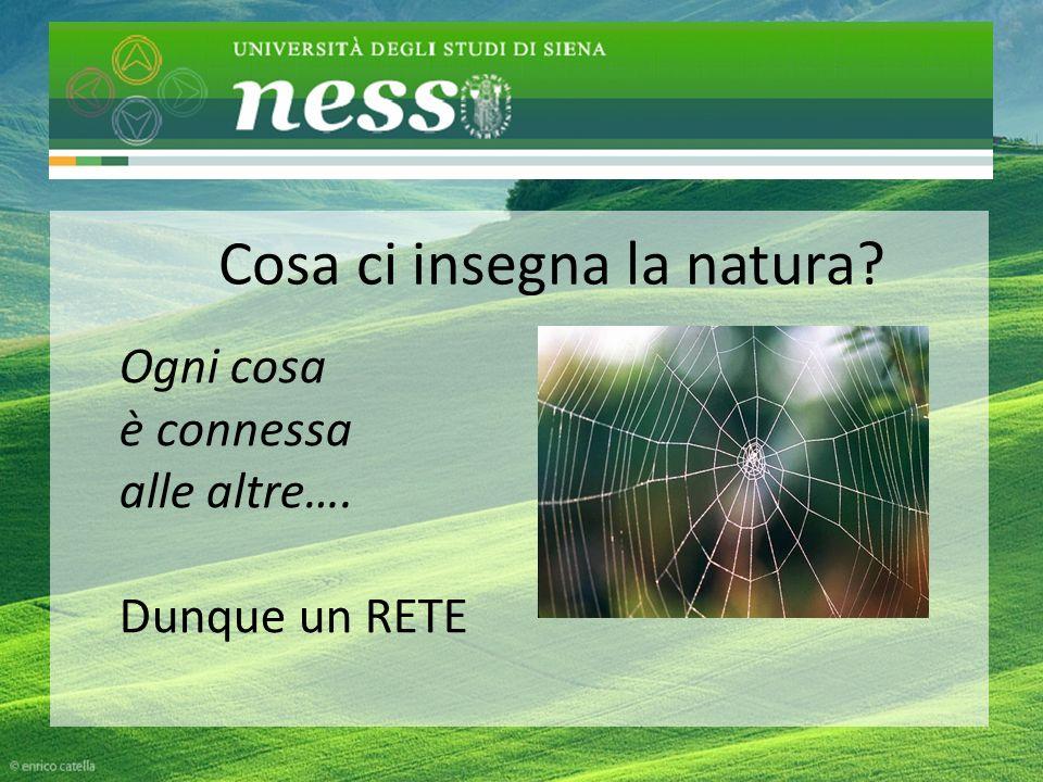 CHI SIAMo Cosa ci insegna la natura Ogni cosa è connessa alle altre…. Dunque un RETE