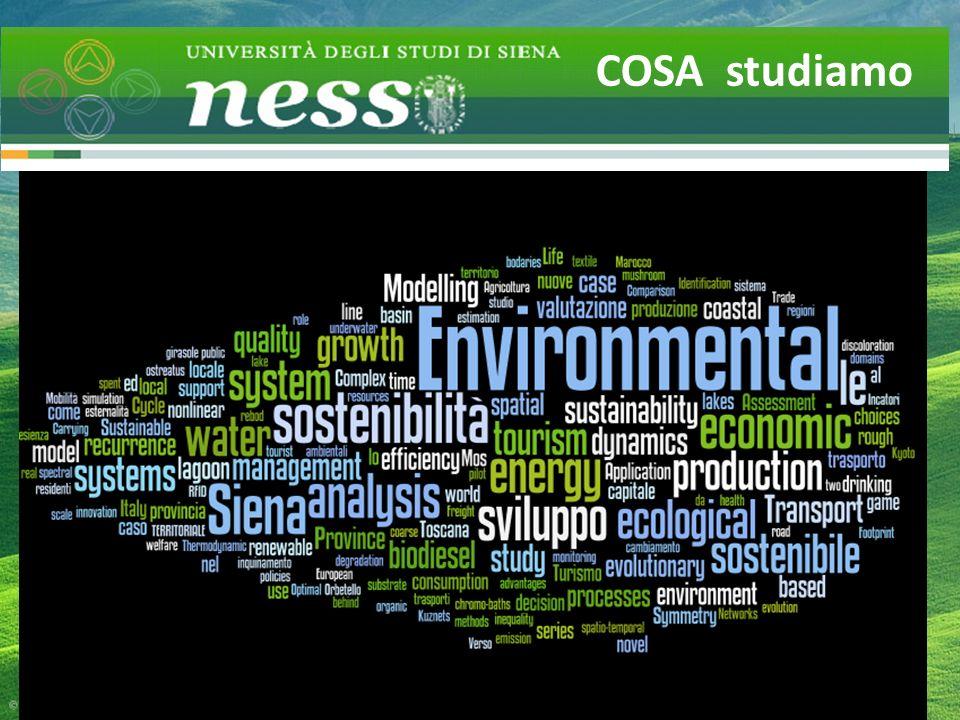 Un comunità scientifica sensibile: Pubblicazioni e progetti COSA studiamo
