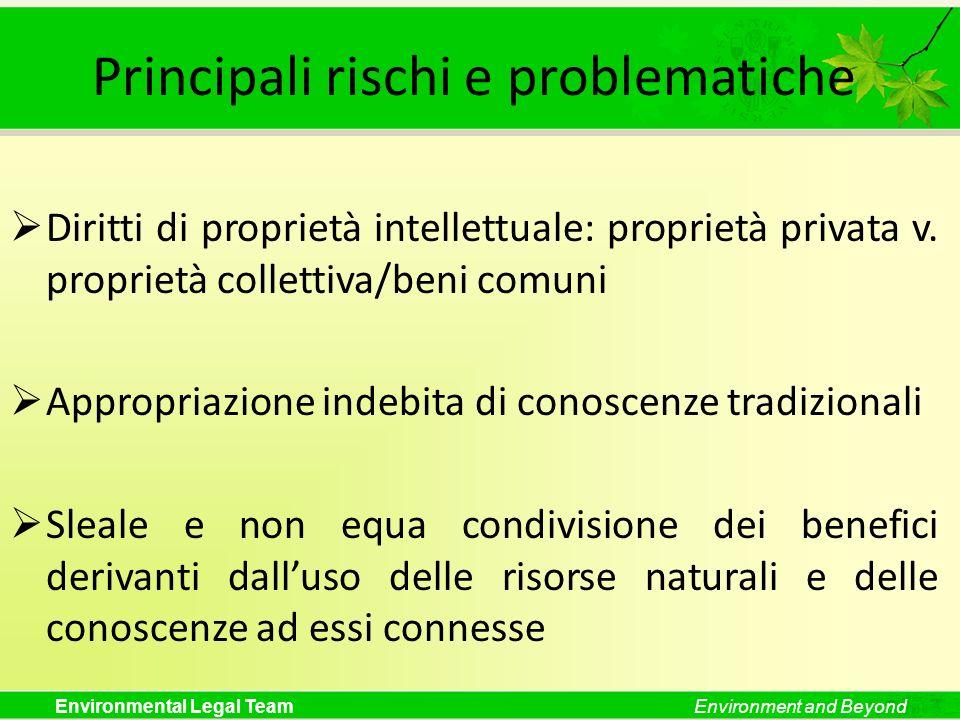 Environmental Legal TeamEnvironment and Beyond Principali rischi e problematiche Diritti di proprietà intellettuale: proprietà privata v. proprietà co