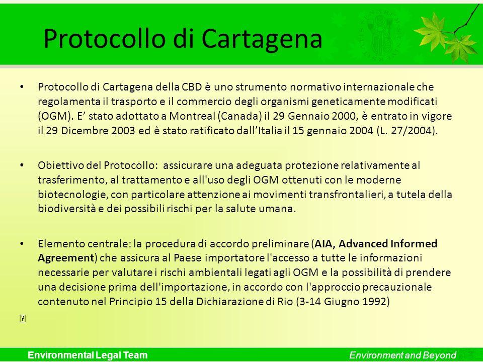 Environmental Legal TeamEnvironment and Beyond Protocollo di Cartagena Protocollo di Cartagena della CBD è uno strumento normativo internazionale che