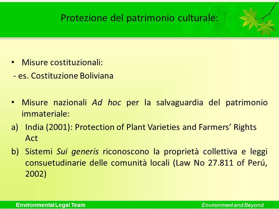 Environmental Legal TeamEnvironment and Beyond Protezione del patrimonio culturale: Misure costituzionali: - es. Costituzione Boliviana Misure naziona