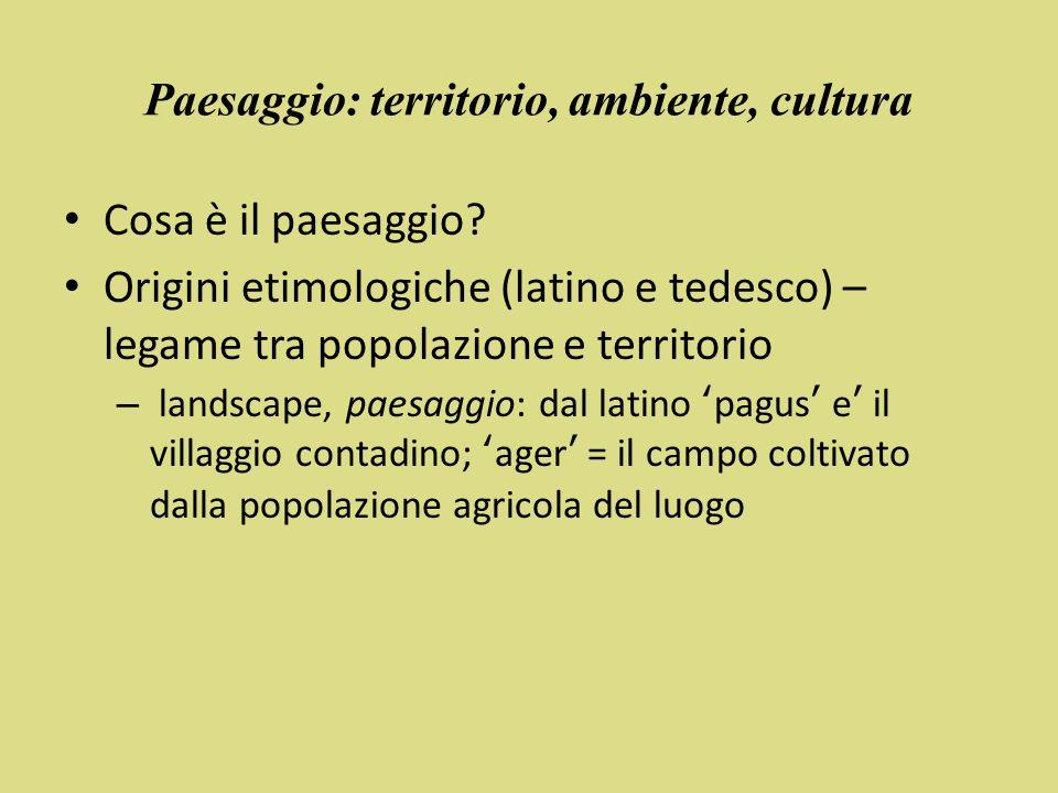Il paesaggio nella Convenzione Unesco 1992: introduzione del concetto di paesaggi culturali nelle Linee Guida Operative per lattuazione della Convenzione La Convenzione UNESCO diviene il primo strumento legale per il riconoscimento e la tutela dei paesaggi culturali.