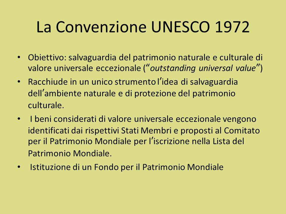 Struttura della Convenzione Preambolo: include i principi fondamentali su cui la Convenzione e basata 4 parti: – Definizione generale – Attuazione a livello nazionale – Cooperazione europea – Altre procedure circa lentrata in vigore