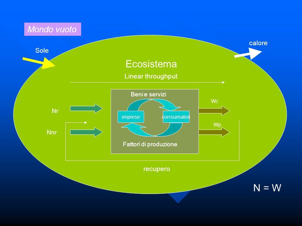 impreseconsumatori Beni e servizi Fattori di produzione Ecosistema Nr Nnr Wp Wc N = W Mondo vuoto Sole calore Linear throughput recupero
