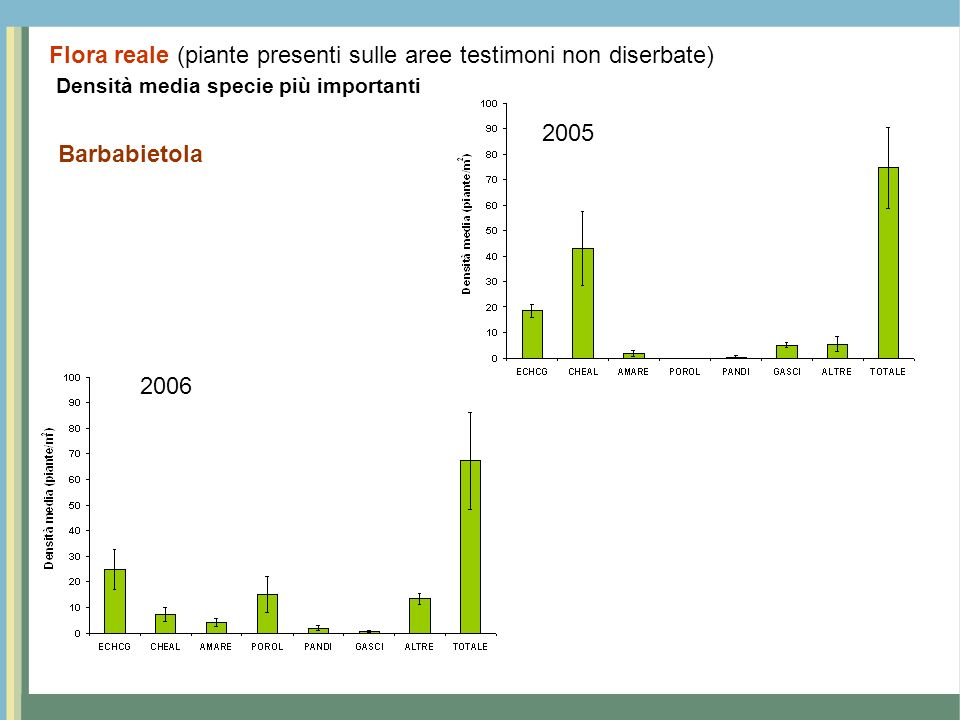 Densità media specie più importanti Barbabietola 2005 2006 Flora reale (piante presenti sulle aree testimoni non diserbate)
