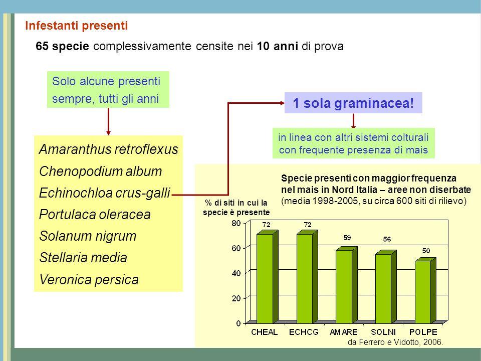 Infestanti presenti 65 specie complessivamente censite nei 10 anni di prova 1 sola graminacea! Solo alcune presenti sempre, tutti gli anni Specie pres