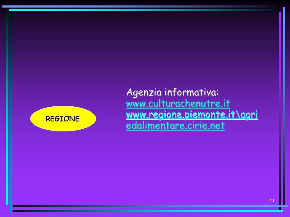 40 Lo strumento naturale e operativo per rispondere a queste esigenze è la possibilità di lavorare allinterno di un sito web (nel nostro caso quello d