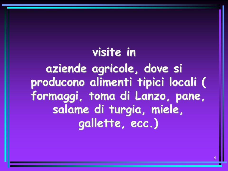 45 Analisi risorse RISORSEFINANZIARIEFinanziamenti Regione Piemonte Assessorato Agricoltura Risorse Del Comune di Ciriè