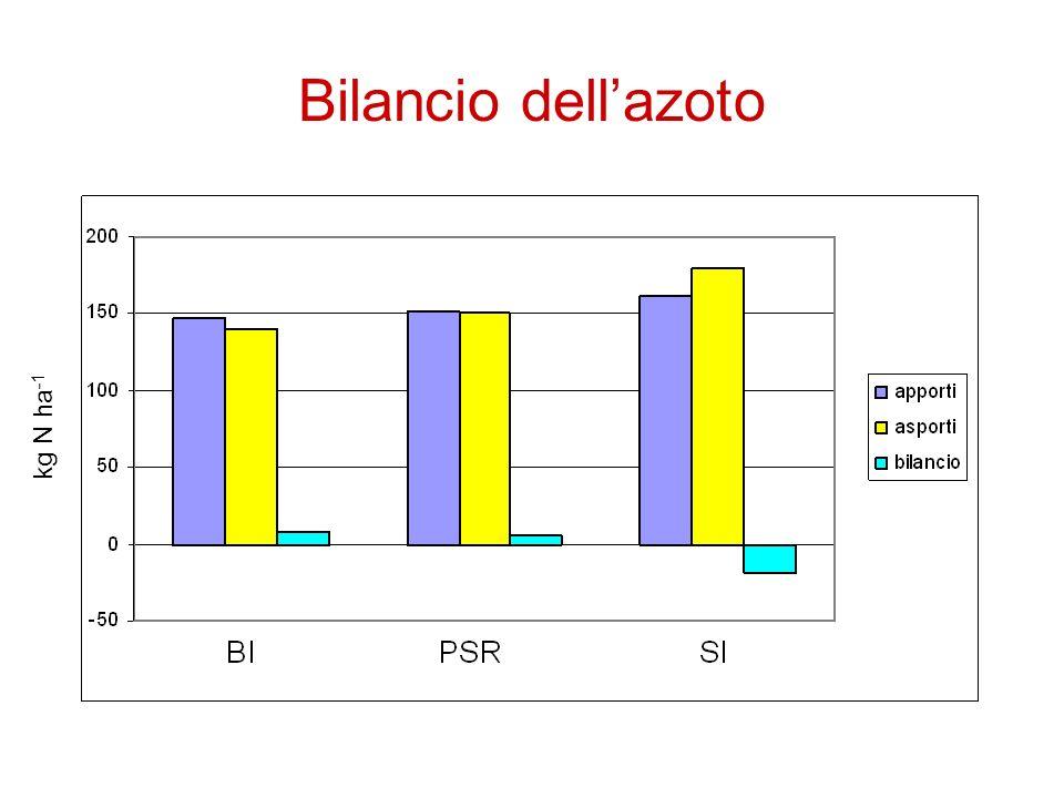 Bilancio dellazoto kg N ha -1