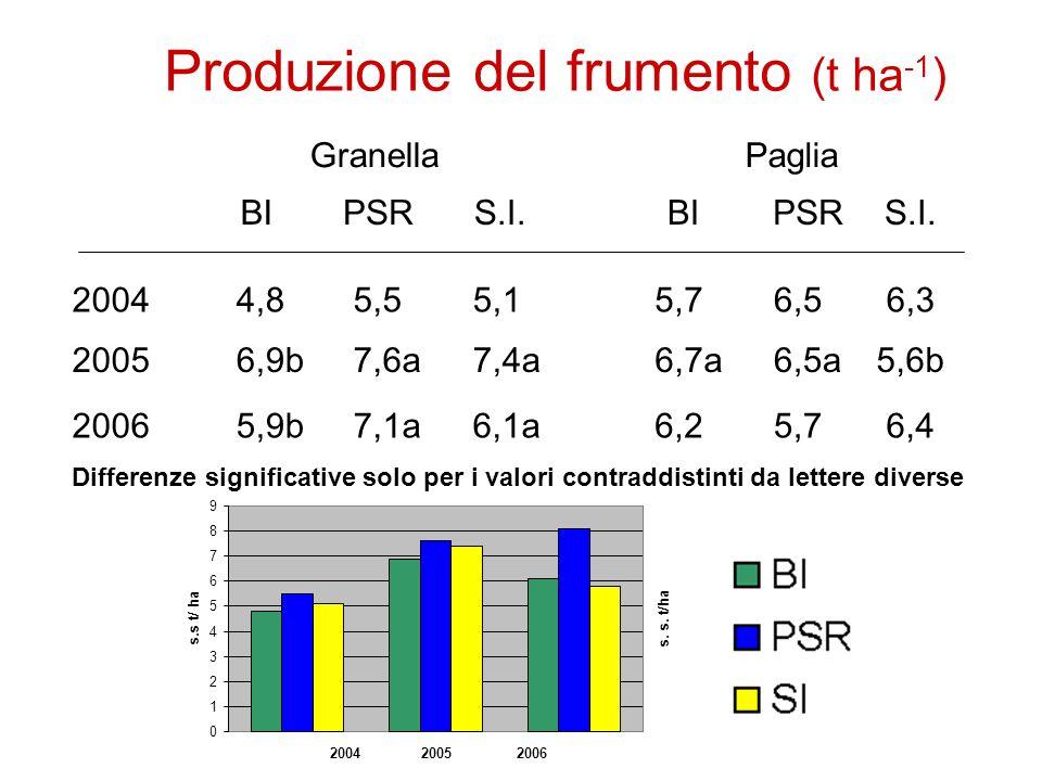 Produzione del frumento (t ha -1 ) 0 1 2 3 4 5 6 7 8 9 2004 2005 2006 s.s t/ ha s.