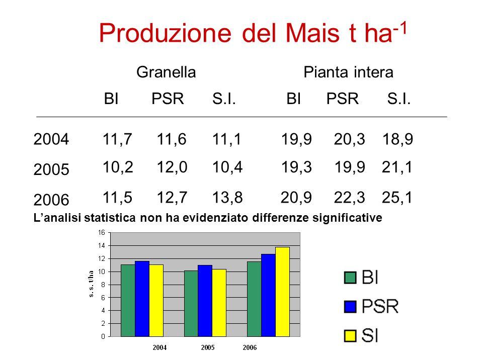 Produzione del Mais t ha -1 2004 2005 2006 Granella BIPSRS.I.
