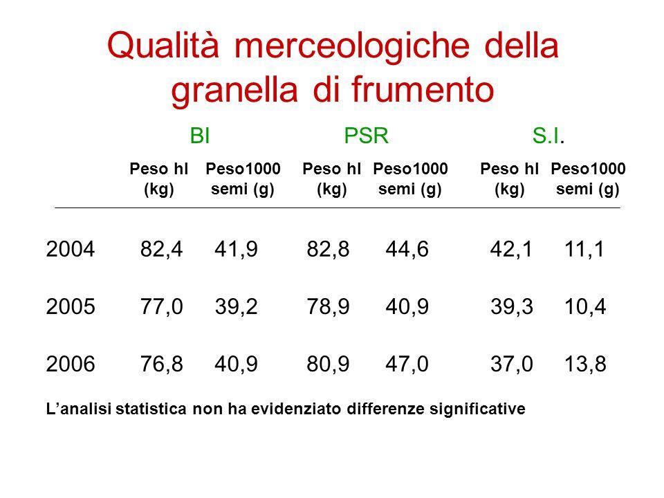 Qualità merceologiche della granella di frumento 2004 2005 2006 BIPSRS.I.