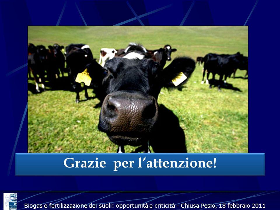 Grazie per lattenzione! Biogas e fertilizzazione dei suoli: opportunità e criticità - Chiusa Pesio, 18 febbraio 2011