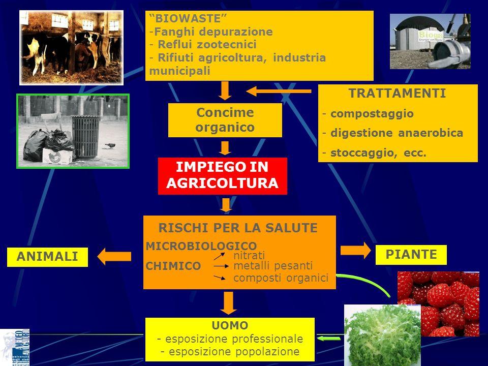 BIOWASTE -Fanghi depurazione - Reflui zootecnici - Rifiuti agricoltura, industria municipali Concime organico IMPIEGO IN AGRICOLTURA RISCHI PER LA SAL