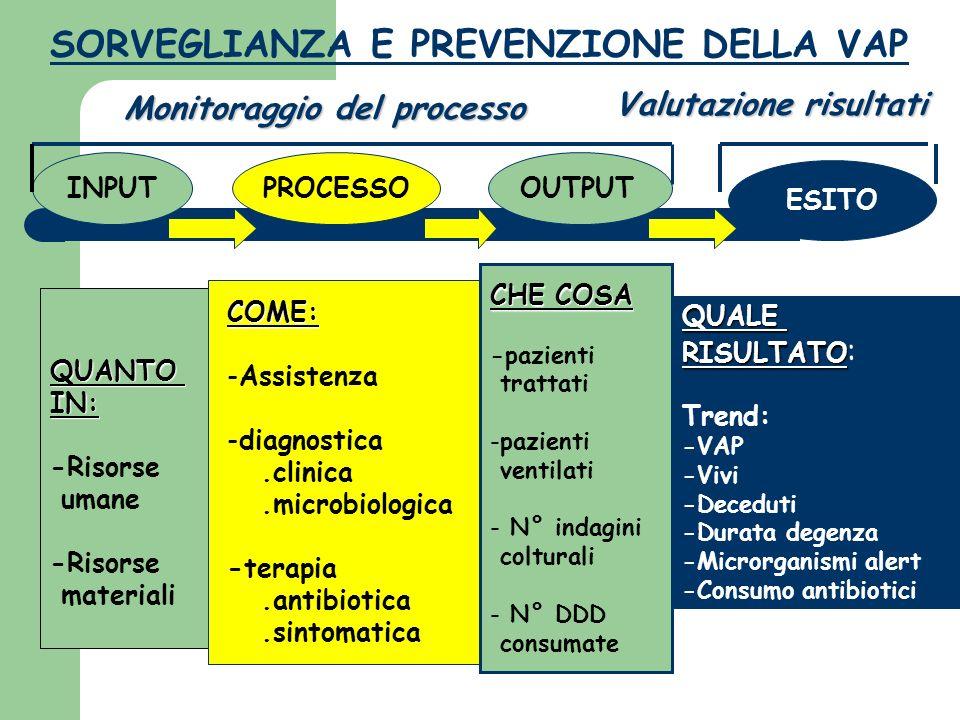 SORVEGLIANZA E PREVENZIONE DELLA VAP INPUT QUANTOIN: -Risorse umane -Risorse materiali PROCESSO COME: -Assistenza -diagnostica.clinica.microbiologica