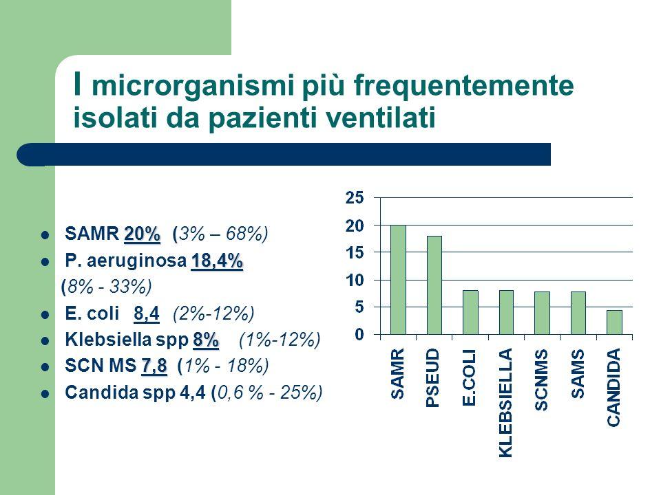 I microrganismi più frequentemente isolati da pazienti ventilati 20% SAMR 20% (3% – 68%) 18,4% P. aeruginosa 18,4% (8% - 33%) E. coli 8,4 (2%-12%) 8%